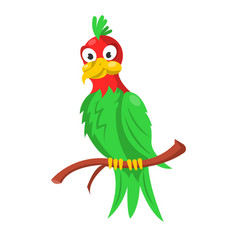 Colorful parrot sitting on branch isolated on vector