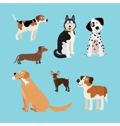 cartoon happy dogs set vector image