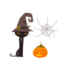 halloween objects - cat spider web pumpkin vector image