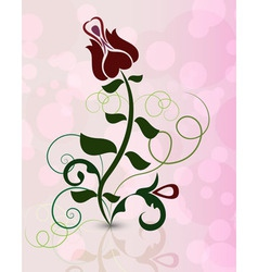 Rose flower on pinky background vector image
