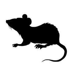 Little house mouse vector