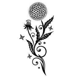 Dandelion flower spring vector image
