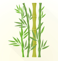 Flat bamboo plants icon vector