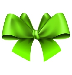 Big green bow vector