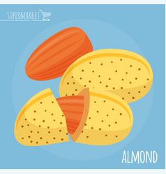 Almond flat design icon vector
