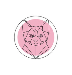 geometric animal cat head vector image vector image