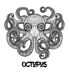 hand drawn octopus vector image