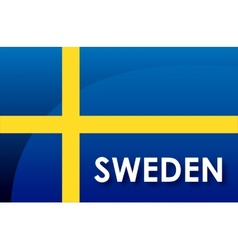 Sweden flag vector