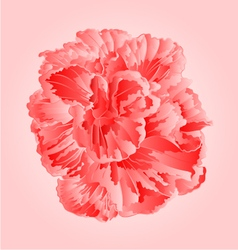 Tropical flower pink hibiscus blossom simple vector image vector image