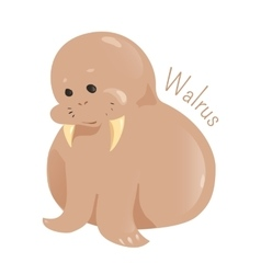 Walrus isolated Child fun pattern icon vector image vector image