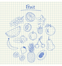 fruit doodles squared paper vector image