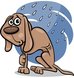 Homeless dog cartoon vector