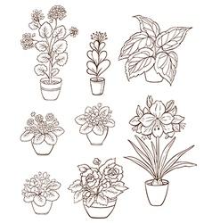 Set of various houseplants vector image