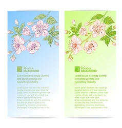 Two sakura banners vector