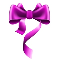 Big violet bow vector
