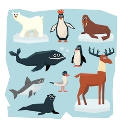 Arctic and antarctic animals fish set vector