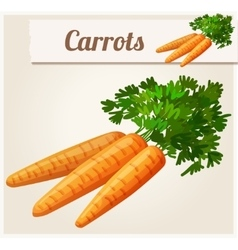 Carrots Detailed Icon vector image vector image