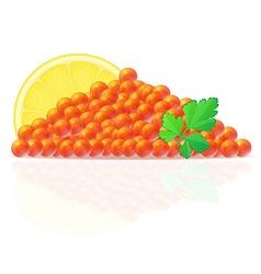 Caviar 03 vector