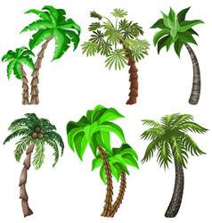 Set of tropical plants vector