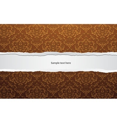 torn cardboard with damask wallpaper vector image vector image