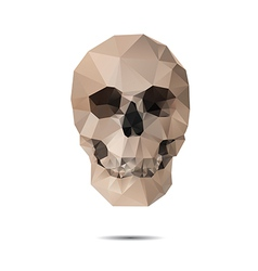 Crystal skull vector