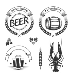 Set of beer design elements vector
