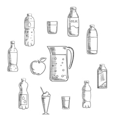 Beverages and drinks sketches set vector