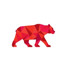 American black bear walking low polygon vector