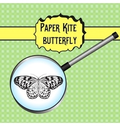 Butterfly idea leuconoe paper kite sketch of vector