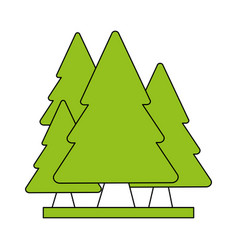 color silhouette cartoon set green pine trees vector image