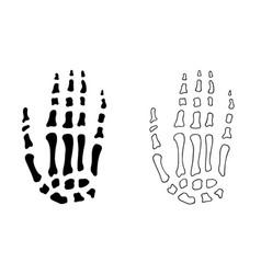 Hand bones vector