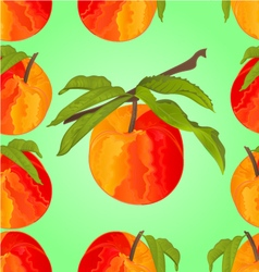 Seamless texture peach with leaves sweet fruit vector