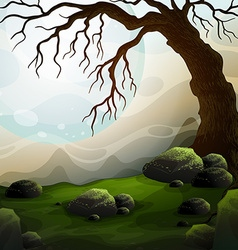 Nature scene with dead tree and fog vector