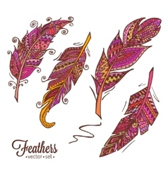 Hand drawn feathers 2 vector