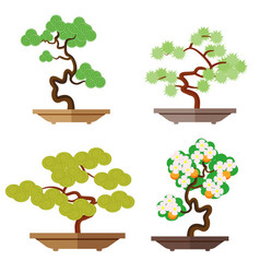set of bonsai japanese culture is the cultivation vector image