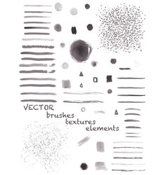 set of different brushes vector image vector image