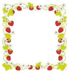 Strawberry square frame vector