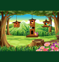 park scene with birds in birdhouse vector image