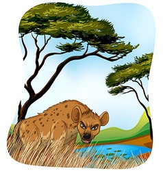 Brown hyena in nature vector