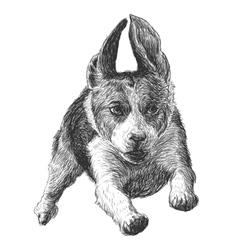 Flying beagle 02 vector
