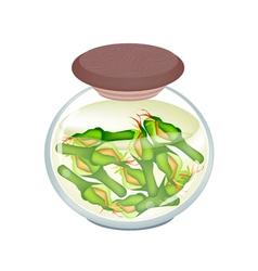 Jar of zucchini pickles in malt vinegar vector