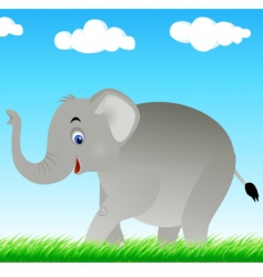 elephant in the wild vector image
