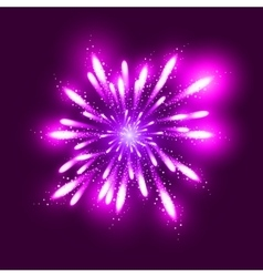 Fireworks  dark background with vector