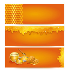 natural honey advertising for organic shop vector image