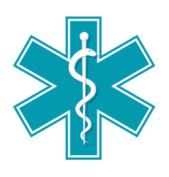 star of life vector image