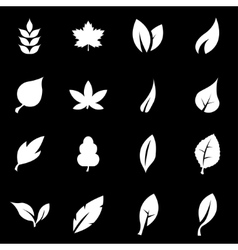 white leaf icon set vector image vector image