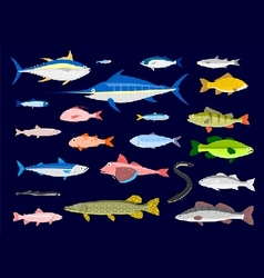 Edible fishes vector