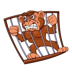 Angry monkey in cage vector