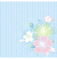 bouquet of hibiscus on blue background vector image vector image