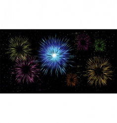 fireworks holiday night vector image vector image